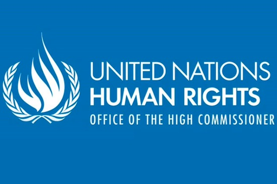 UN_Human_Rights_Commissioner_550