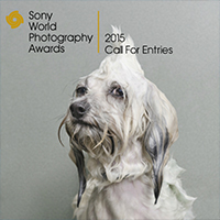 sony_world-photography-awards_200
